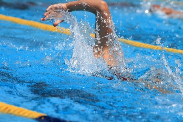 泳ぐ - パークむつざわ